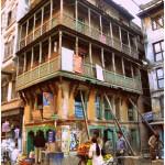 Nepalese winkelwieler, Kathmandu