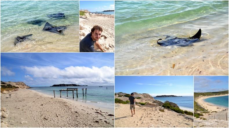 Hamelin Bay - SW Australia