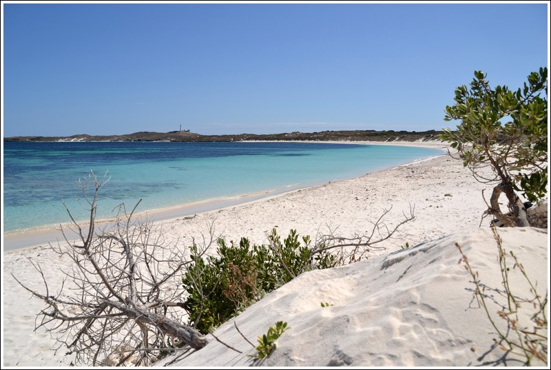 Little Salmon Bay - Rottnest Island