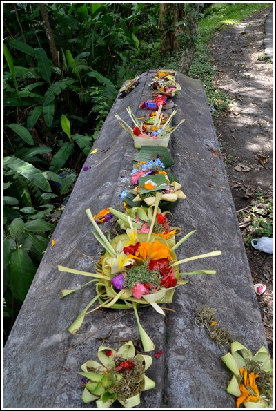 Canang Sari in Ubud