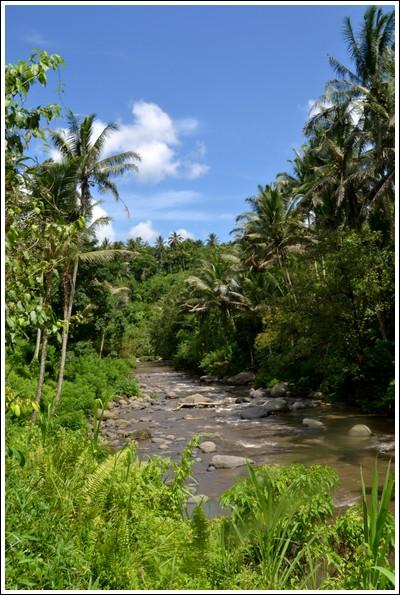 Sayan River hike, Ubud