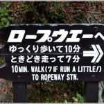 LiT in Miyajima